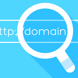 Your Domain Name is the First Impression You Will Make on the Public
